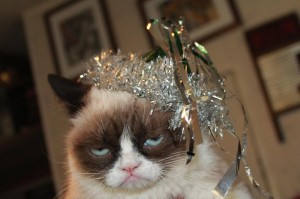 via grumpycats.com